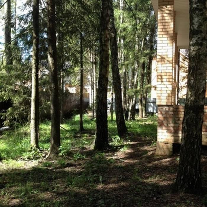 Коттеджный посёлок: дер. Малые Семенычи (фото 8)
