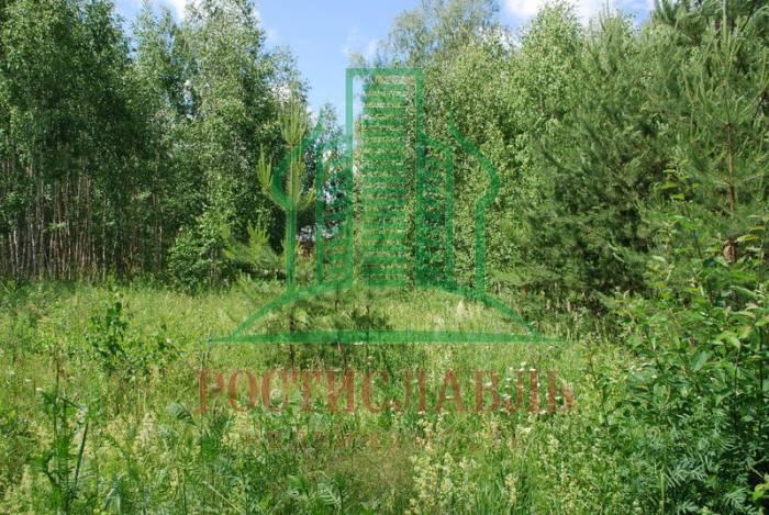 участок - село Сенницы-2, Озерский р-н