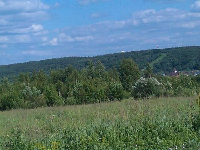 Участок: село Верхнее Мячково (фото 5)