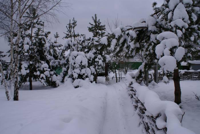 Коттеджный посёлок: г. Электроугли (фото 60)