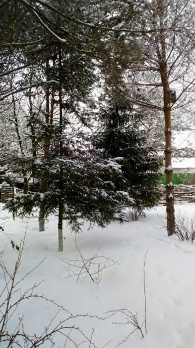 Коттеджный посёлок: г. Электроугли (фото 34)