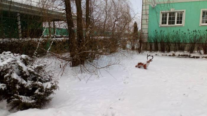 Коттеджный посёлок: г. Электроугли (фото 32)