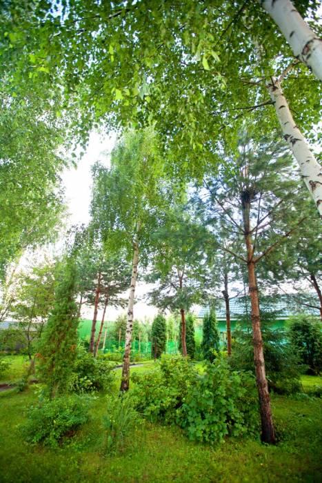 Коттеджный посёлок: г. Электроугли (фото 11)