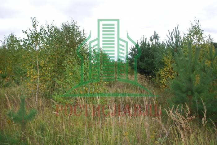 Участок: дер. Свиридоново (фото 3)